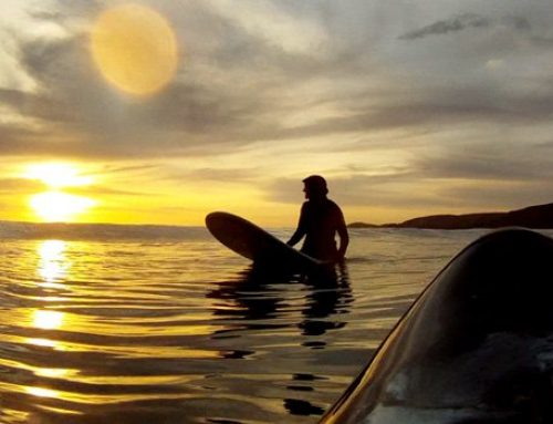 Sunny Surfing……